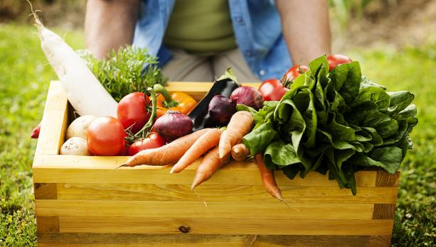 organic food basket 1540278234 613x348.184 3 0